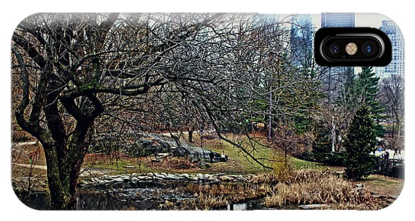 Central Park In January IPhone Case