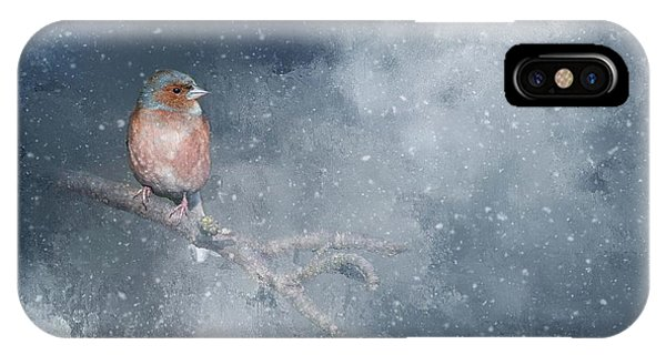 Chaffinch On A Cold Winter Day IPhone Case