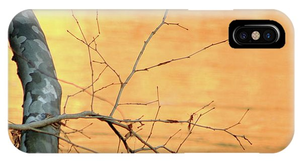 Chagrin River Gold IPhone Case