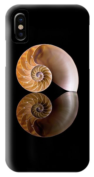 Chambered Nautilus IPhone Case