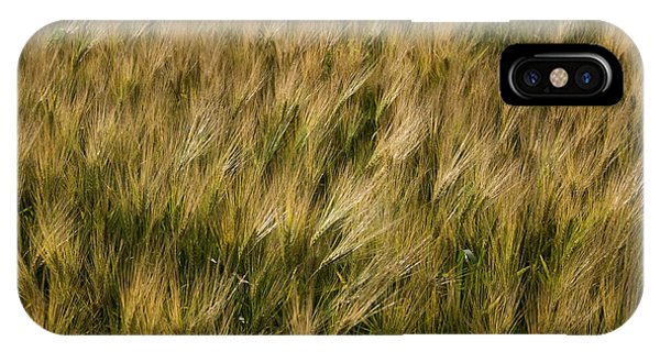 Changing Wheat IPhone Case
