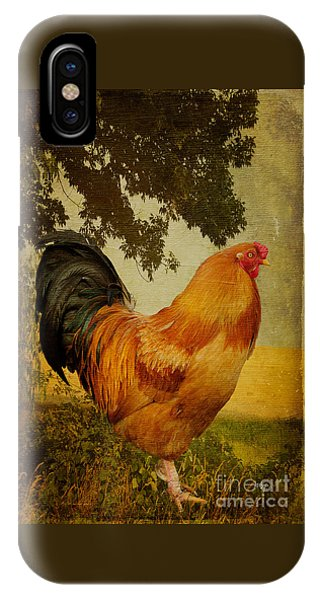 Chanticleer IPhone Case