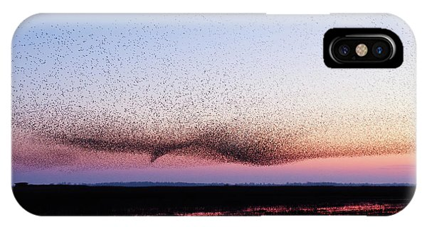 Starlings iPhone Case - Chaos In Motion - Bird Of Many Birds by Roeselien Raimond
