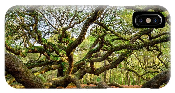 Charleston Sc Angel Oak Tree South Carolina Landscape IPhone Case