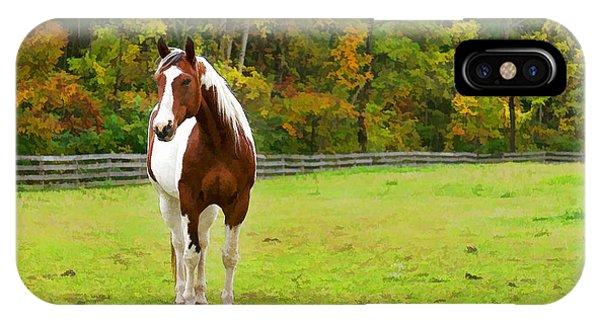 Treeline iPhone Case - Charming Pinto Horse by Georgia Mizuleva