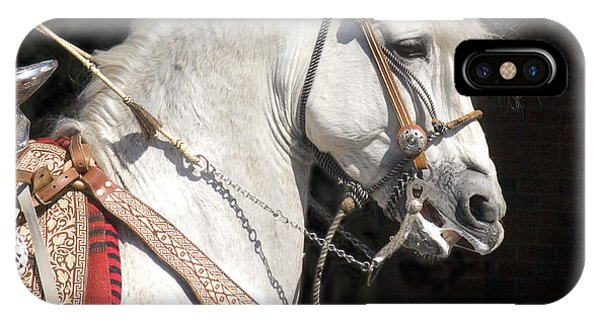 Charro Stallion IPhone Case
