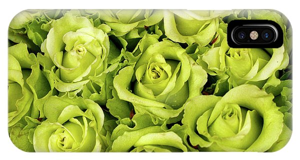 Chartreuse Colored Roses IPhone Case
