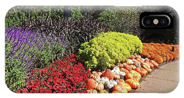 Cheekwood Gardens Fall Harvest Scene IPhone Case