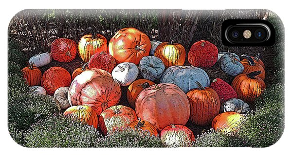 Cheekwood Gardens Pumpkin Patch With Poster Edges IPhone Case
