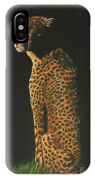 Cheetah At Sunset IPhone Case