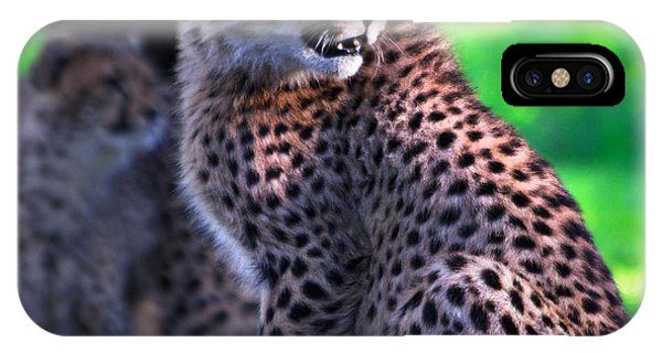 Cheetah Cub IPhone Case