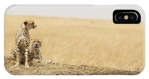 iPhone Case - Cheetah Pair In The Masai Mara by Jane Rix