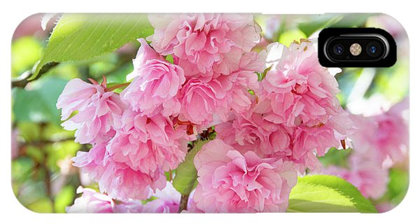 Cherry Blossom Cluster IPhone Case