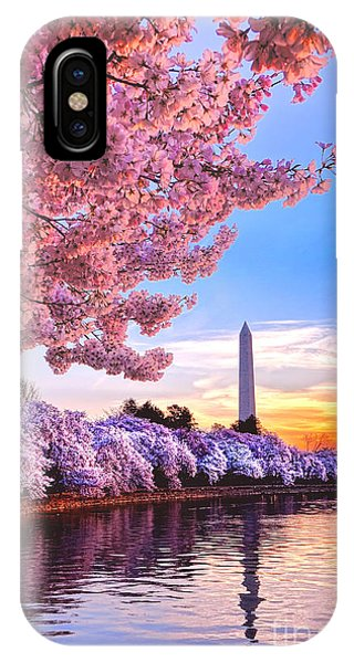 Tidal iPhone Case - Cherry Blossom Festival  by Olivier Le Queinec