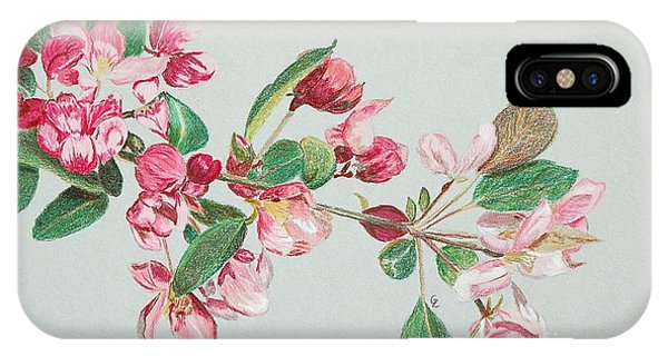 Cherry Blossom Phone Case by Glenda Zuckerman