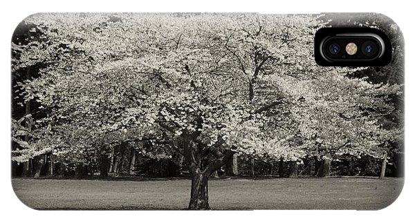Cherry Blossom Tree - Ocean County Park IPhone Case