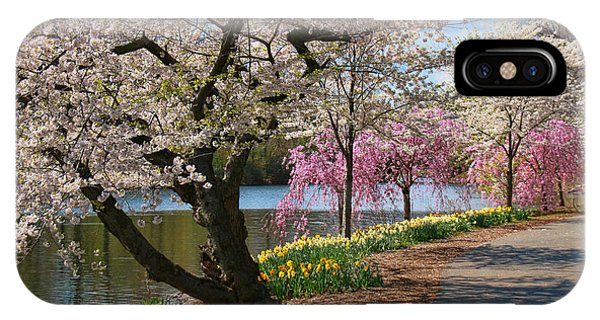 Cherry Blossom Trees Of Branch Brook Park 17 IPhone Case