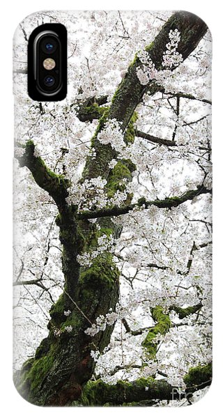 Cherry Blossoms 119 IPhone Case