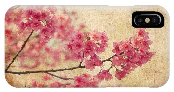 Pink iPhone Case - Cherry Blossoms by Rich Leighton