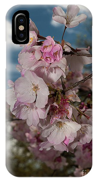 Cherry Blossoms Vertical IPhone Case