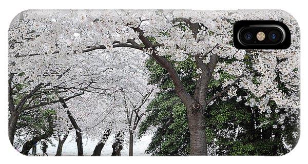Cherry Blossoms Washington Dc IPhone Case