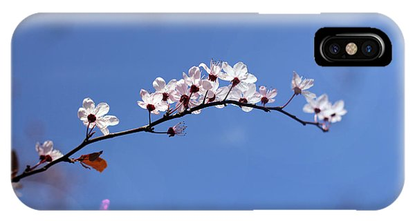 Cherry Flowers With Lens Flare IPhone Case