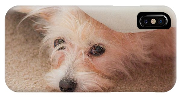 Chica In Hiding IPhone Case