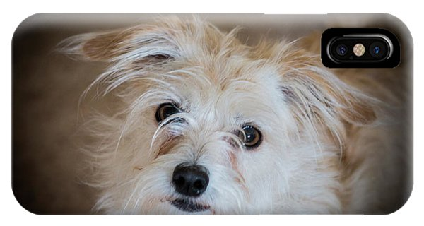 Chica On The Alert IPhone Case