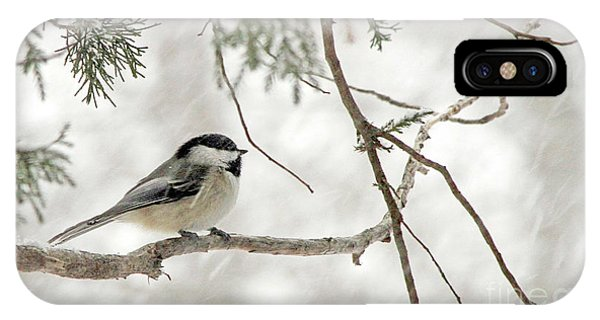 Chicadee In A Snow Storm  IPhone Case