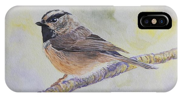 Chickadee 2 IPhone Case
