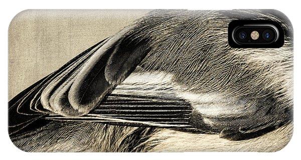 Chickadee Feathers IPhone Case