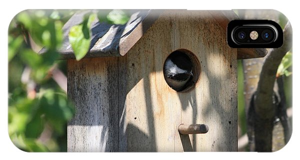 Chickadee In Birdhouse IPhone Case
