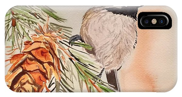 Chickadee In The Pine IPhone Case