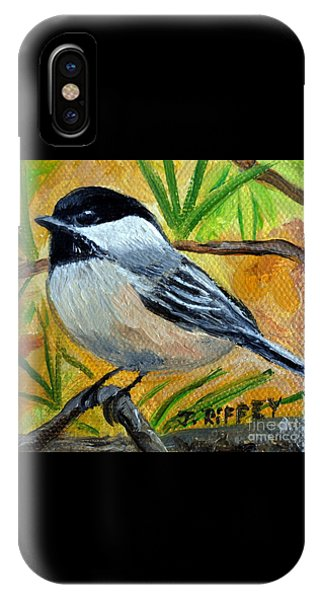 Chickadee In The Pines - Birds IPhone Case