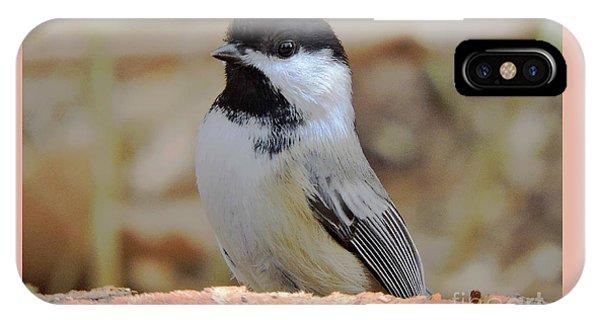 Chickadee's Winter Reverie IPhone Case