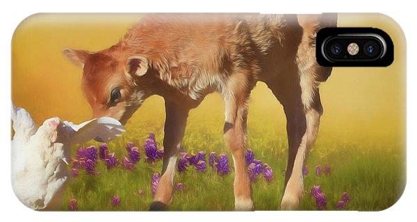 Barnyard Animals iPhone Case - Chicken Little by Donna Kennedy
