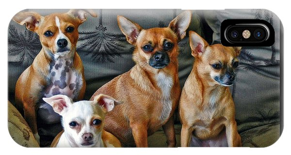 Chihuahuas Hanging Out IPhone Case