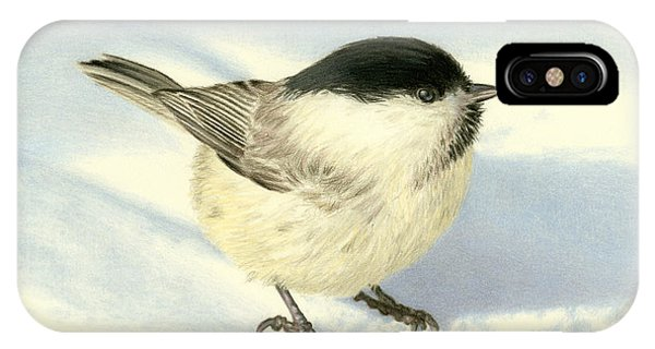 Cute Bird iPhone Case - Chilly Chickadee by Sarah Batalka