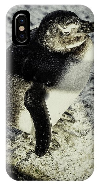 Chillypenguin IPhone Case