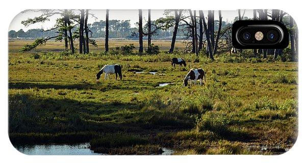 Chincoteague Ponies IPhone Case
