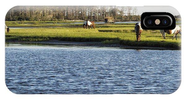Chincoteague Ponies On Assateague Island IPhone Case