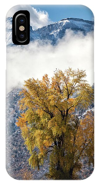 IPhone Case featuring the photograph Chipeta And Cottonwood by Denise Bush