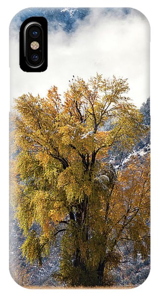 Chipeta And Cottonwood IPhone Case