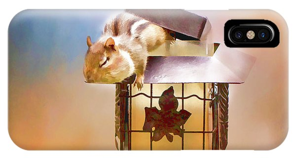 Chipmunk At The Feeder 3 Nursery Triptych  IPhone Case