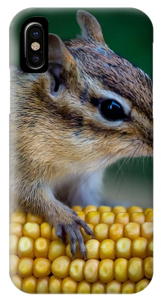 Chipmunk Goes Wild For Corn IPhone Case