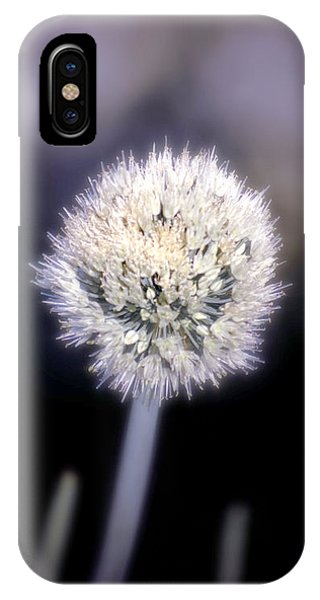 iPhone Case - Chive by Holly Kempe
