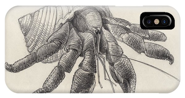 IPhone Case featuring the drawing Chocolate Hermit Crab by Judith Kunzle