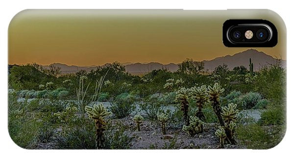 Cholla Desert Sunset IPhone Case
