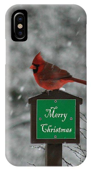 Christmas Cardinal Male IPhone Case