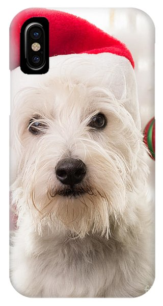 Elf iPhone X Case - Christmas Elf Dog by Edward Fielding